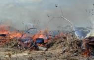 Fumaça das queimadas da Amazônia pode causar câncer