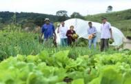 Governo mineiro pode comprar mais da agricultura familiar em 2018