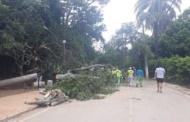 Prefeitura questiona Cemig sobre descaso com a rede elétrica de Lagoa Santa