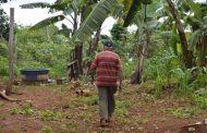 Minas Gerais institui o Plano Estadual de Pobreza no Campo