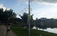 Enfeites de festa deixados na orla da Lagoa Central gera indignação da população
