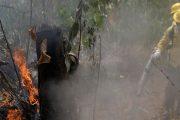 Governo de Minas Gerais envia ajuda para combater queimadas na Amazônia