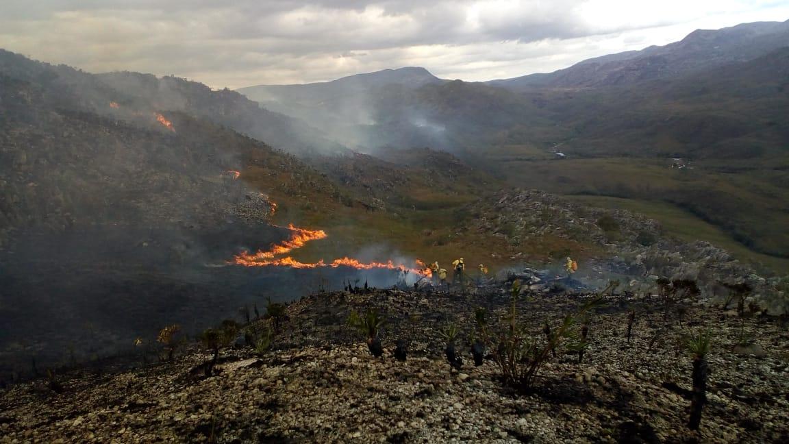 Fogo destrói vegetação na Serra do Cipó