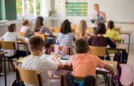 Escola Ipê Amarelo de Lagoa Santa seleciona professores de inglês e alemão