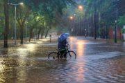 Minas Gerais tem 101 cidades em situação de emergência