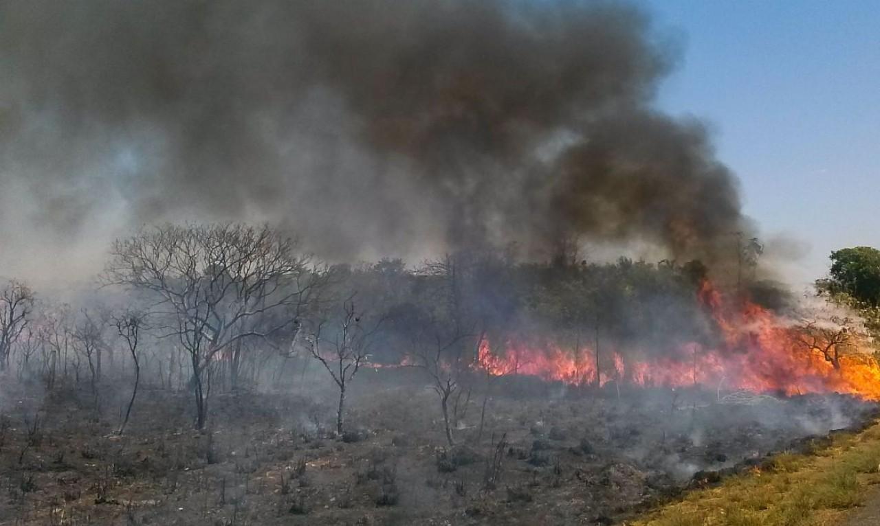 Minas Gerais registra 781 novos incêndios em apenas 48 horas