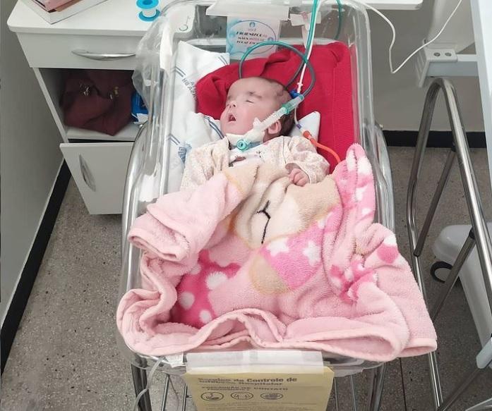 Família de Lagoa Santa pede ajuda para o tratamento da Lulu