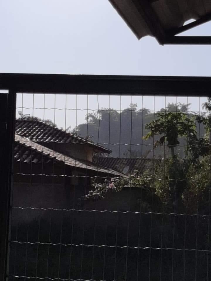 Carvoaria de Lagoa Santa se manifesta após denúncia
