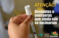 Prefeitura de São José da Lapa vai iniciar vacinação de puérperas e gestantes contra a Covid-19