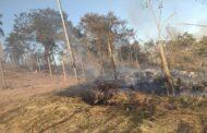 Incêndio atinge vegetação no bairro Moreira em Santa Luzia