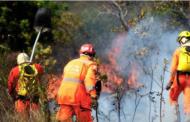 Incêndio em vegetação, nesta madrugada, entre a MG10 e a Cidade Administrativa