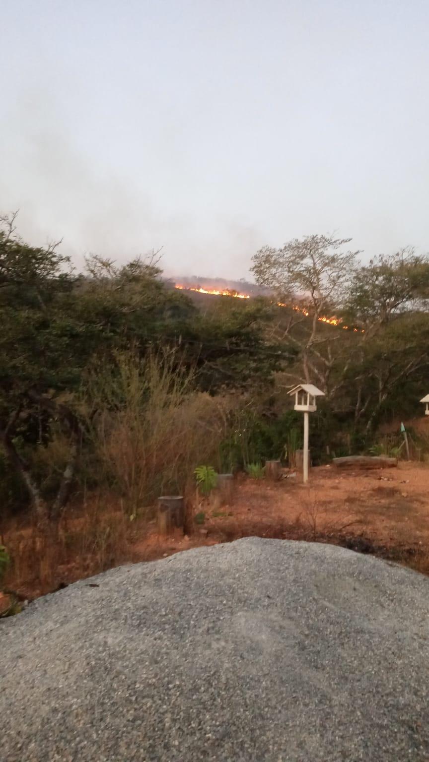 Incêndio em grandes proporções destrói mata em Jaboticatubas
